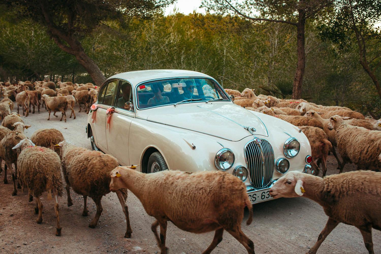 funny documentary wedding photographer sitges